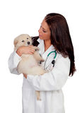 Pretty vet with a cute puppy Royalty Free Stock Image