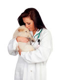 Pretty vet with a cute puppy Royalty Free Stock Photos