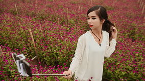 Pretty Vietnamese girl taking photo with a selfie stick on meadow with purle flowers. stock video footage