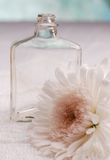 Pretty Vintage. Vintage bottle with a gerbera daisy Royalty Free Stock Photography