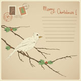 Pretty vintage card for Christmas and New year hol. Idays with bird illustration. Eps 10 Stock Photo