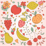 Pretty vintage set of fruits Royalty Free Stock Images