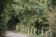 Pretty walk in Hampstead Heath Royalty Free Stock Photo