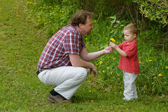Pretty Weeds. Father and Son explore Dandelions growing in a field royalty free stock photography