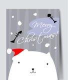Pretty white cat. Stock Image