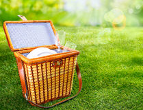 Picnic basket on a sunny green lawn Stock Image