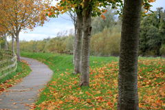 Pretty winding walkway with fall colors still on trees Royalty Free Stock Photography