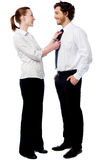 Pretty woman adjusting her husband's tie Royalty Free Stock Photo