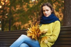 Pretty woman in the autumn park stock image