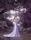 A pretty woman in a beautiful, dress Royalty Free Stock Photos