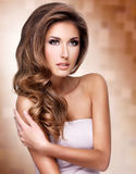 Pretty woman with beautiful long brown hair Stock Photos