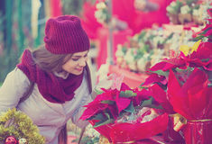 Pretty woman buying floral compositions at Christmas market Stock Images