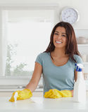 Pretty woman doing the housework Royalty Free Stock Photography