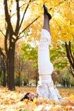 Pretty woman doing yoga exercises Royalty Free Stock Photos
