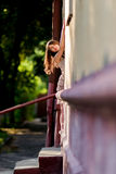 Pretty woman in the doorway of a house Royalty Free Stock Image