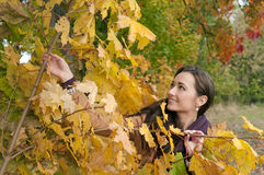 Pretty woman enjoying autumn Stock Photos