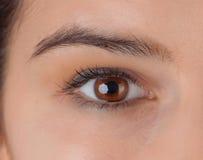 Pretty woman eye Royalty Free Stock Photography