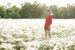 Pretty woman in feather-grass field Royalty Free Stock Photo