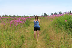Pretty woman in field of lupins Stock Photo