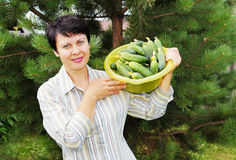 Pretty woman-gardener with fresh cucumbers Royalty Free Stock Images