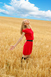 Pretty woman in golden wheat Stock Images