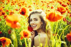 Pretty woman or happy girl in field of poppy seed royalty free stock image