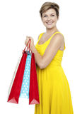 Pretty woman holding colorful shopping bags Royalty Free Stock Photos