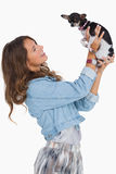 Pretty woman lifting her chihuahua Stock Image