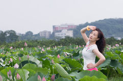 A pretty woman in lotu fields Royalty Free Stock Images
