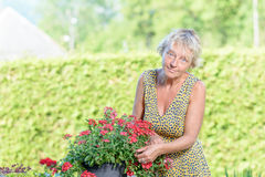 A pretty woman of middle age care flowers Royalty Free Stock Photography