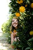 Pretty woman in orange grove smiling Stock Images