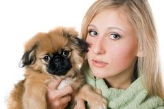 Pretty woman with a pekinese Stock Image