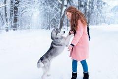 Pretty woman with playful husky dog Royalty Free Stock Photos