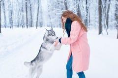 Pretty woman with playful husky dog Stock Image