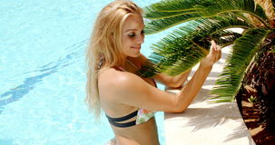 Pretty woman in the pool holding palm leaves stock footage