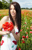 Pretty woman in poppy flowers Royalty Free Stock Photography