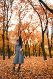 Pretty woman posing in autumn park near big tree. Beautiful landscape at fall season royalty free stock photos