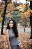 Pretty woman posing in autumn park near big tree. Beautiful landscape at fall season stock photos