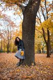 Pretty woman posing with maple`s leaves in autumn park near big tree. Beautiful landscape at fall season stock photo