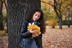 Pretty woman posing with maple`s leaves in autumn park near big tree. Beautiful landscape at fall season royalty free stock photo