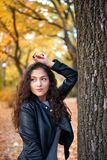 Pretty woman posing with maple`s leaves in autumn park near big tree. Beautiful landscape at fall season stock images