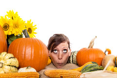 Pretty woman between pumpkins Stock Image