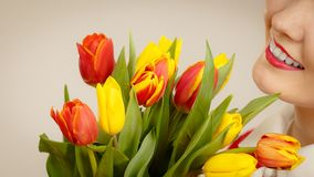 Pretty woman with red yellow tulips bunch stock images