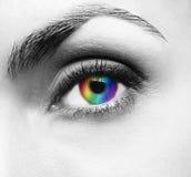 Pretty woman's eye Stock Photography