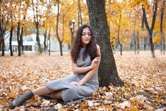 Pretty woman is sitting in autumn park near big tree. Beautiful landscape at fall season royalty free stock photography