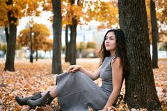 Pretty woman is sitting in autumn park near big tree. Beautiful landscape at fall season royalty free stock images