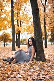 Pretty woman is sitting in autumn park near big tree. Beautiful landscape at fall season stock photos