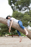 Pretty woman sleeping in a tree after being over worked and having trouble sleeping Royalty Free Stock Photo