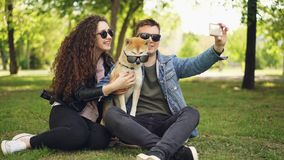 Pretty woman is taking selfie with her boyfriend and adorable dog using smartphone while resting in the park on the. Grass. Humans and animals are wearing stock video footage