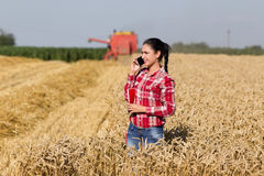 Pretty woman talking on mobile phone in wheat field Stock Photos